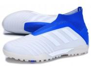 Сороконожки Adidas Predator 19+ TF
