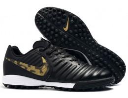 Сороконожки Nike Tiempo Legend VII Pro TF