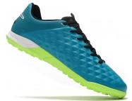 Сороконожки Nike Tiempo Legend VIII Pro TF
