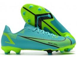 Бутсы (копы) Nike Mercurial Vapor 14 Academy FG